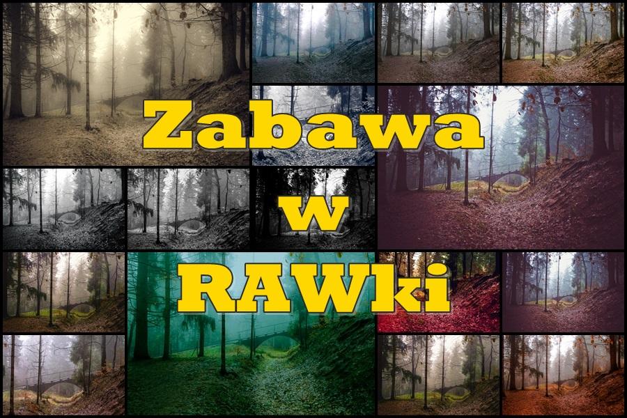 Zabawa w RAWki