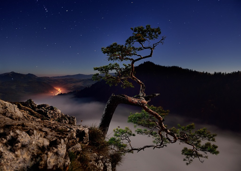 Fot. Grzegorz Dziuba
