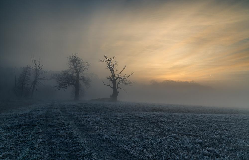 Fot. Robert Kropacz